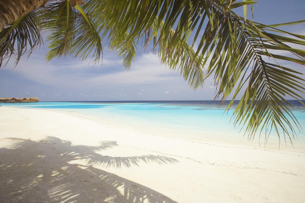 malediven tropisch meer strand - photo #12