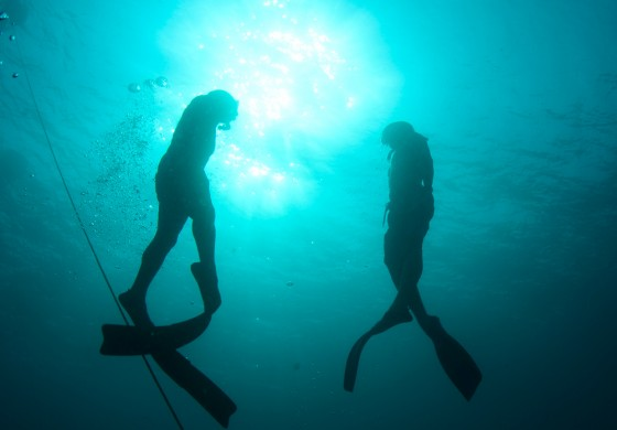 Unterwasser-Festival