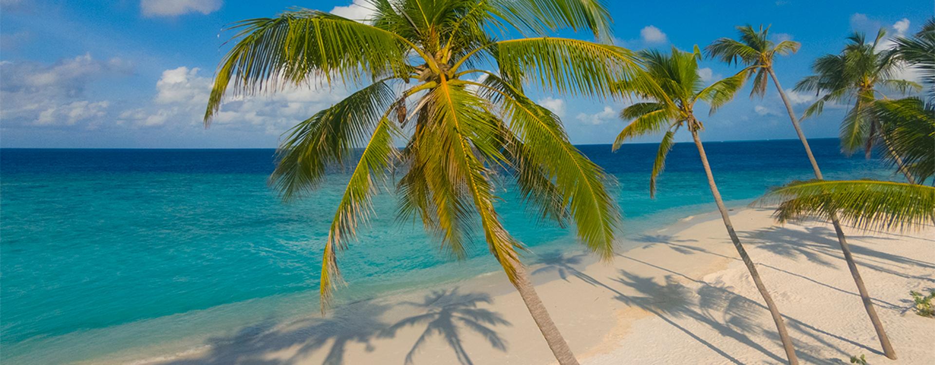 Milaidhoo Island Beach