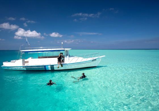 Die Top 5 Tauchplätze rund um Velassaru Maldives