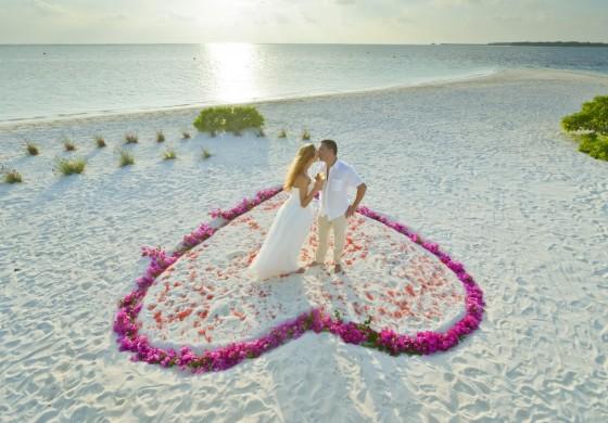 Hochzeit & More
